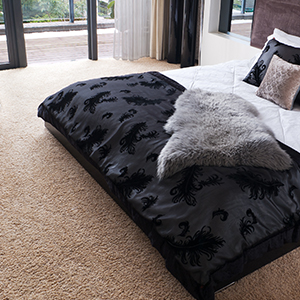 A carpeted bedrom